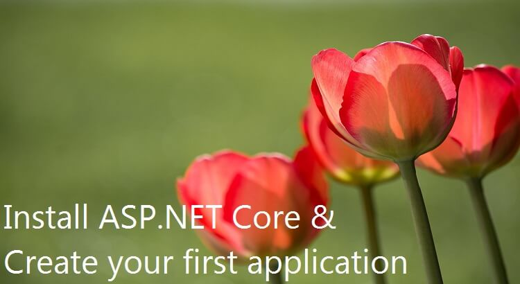 How to Install ASP.NET Core And Create Your First Application