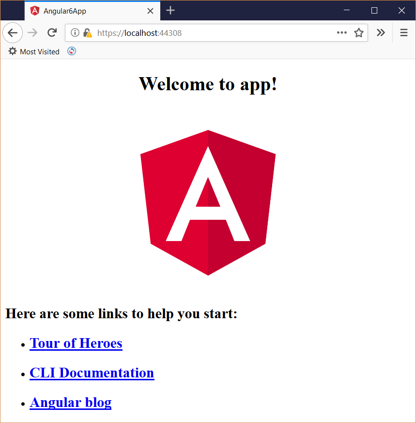 Angular 6 app running in the browser