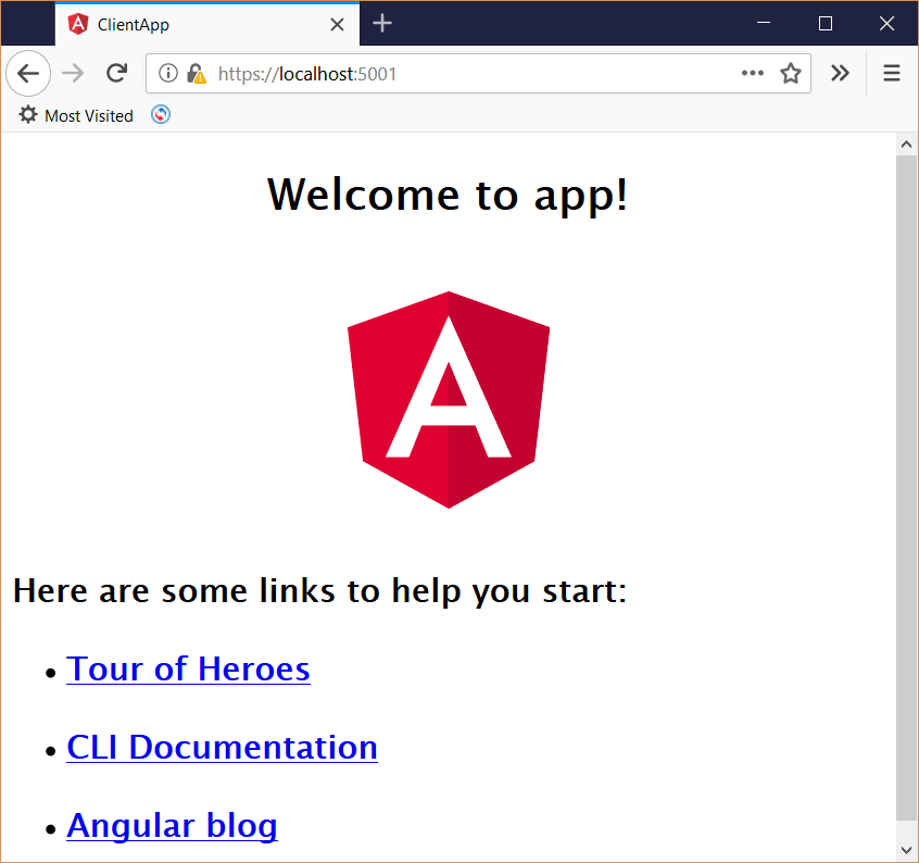 Implement ASP NET Core SPA template features in an Angular 6 app